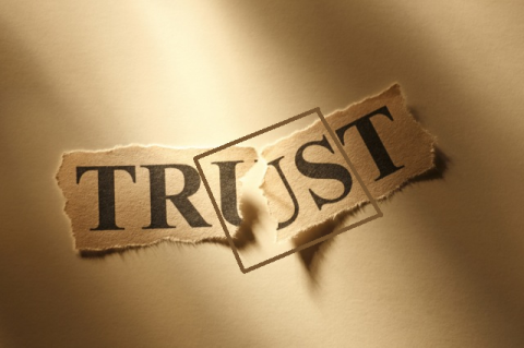 trust-torn6